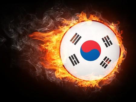 Korea Flag in Fire. Computer Graphics.