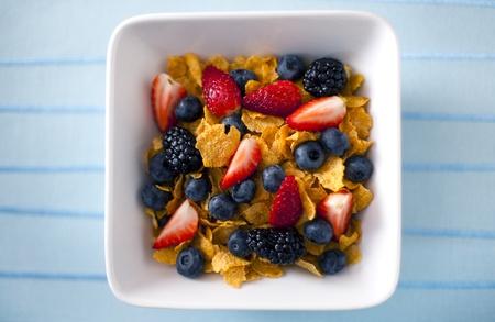 Gesunde Ernährung Standard-Bild - 9060075