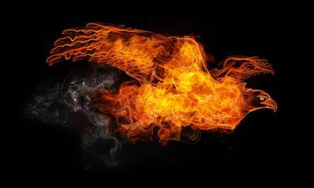 Fire Eagle Stok Fotoğraf