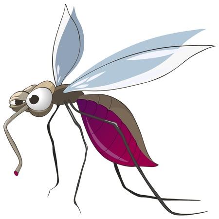 Cartoon Character Mosquito Vettoriali