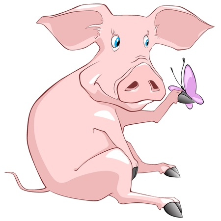 butterfly isolated: Cartoon Character Pig