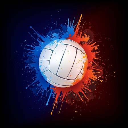 water splash isolated on white background: Volleyball Ball Illustration