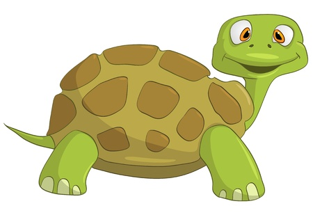 Cartoon Character Turtle Stock Vector - 10465784