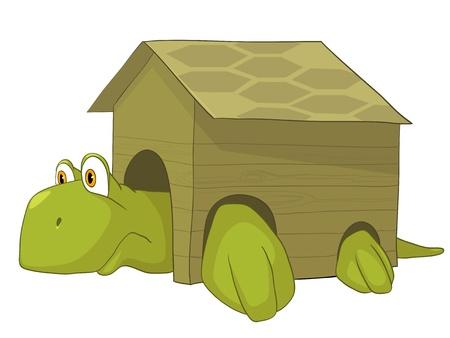 Cartoon Character Turtle Stock Vector - 10465791