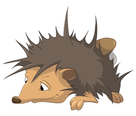 babyish: Cartoon Character Hedgehog