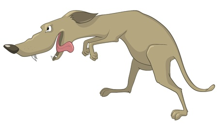 Cartoon Character Sly Dog Stock Vector - 10613978
