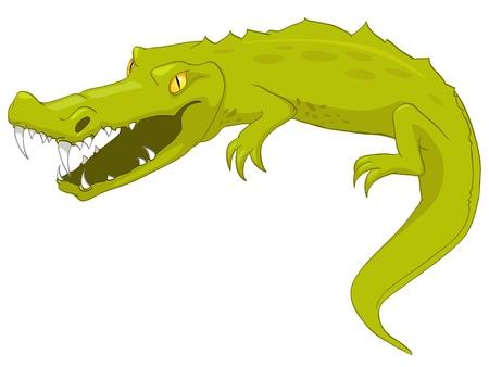 cocodrilos: Caricatura de Cocodrilos caracteres Vectores