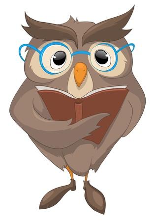 Cartoon Character Funny Owl photo