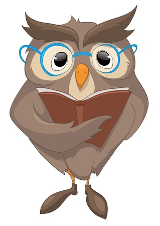 owl illustration: Cartoon Character Funny Owl