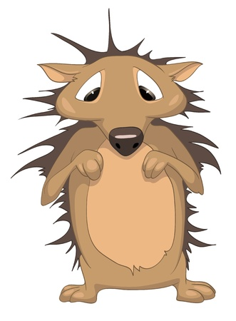 Cartoon Character Hedgehog Vector