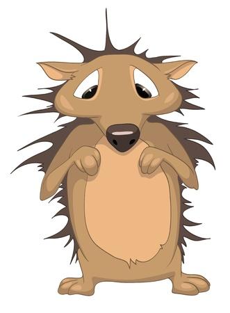 Cartoon Character Hedgehog