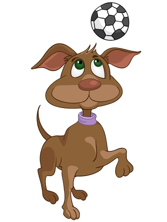 Cartoon Character Dog Vector