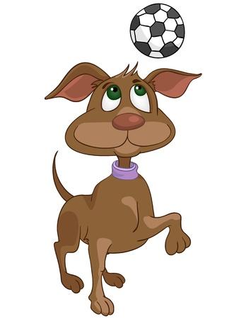 cartoon dog: Cartoon Character Dog Illustration