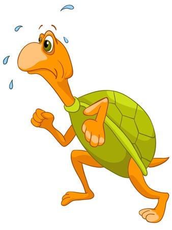 tortuga de caricatura: Turtle Caricatura caracteres Vectores