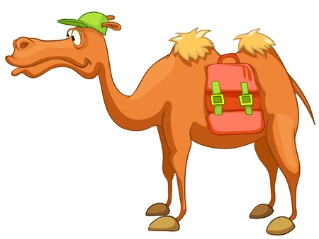 hump: Cartoon Camel caracteres Vectores