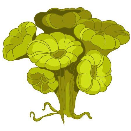 algen: Cartoon Alga