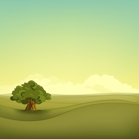 green environment: Field Landscape