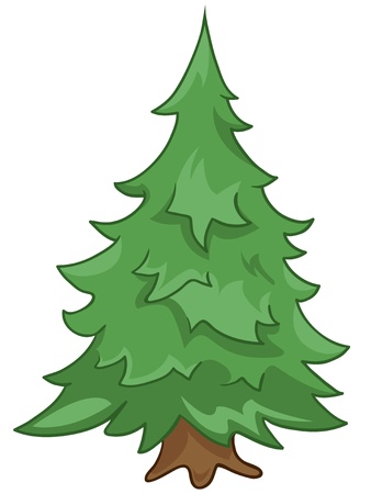 coniferous tree: Cartoon Nature Tree Fir