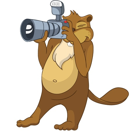Beaver CRIS