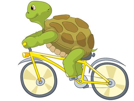 tortuga caricatura: Biker tortuga divertida Vectores
