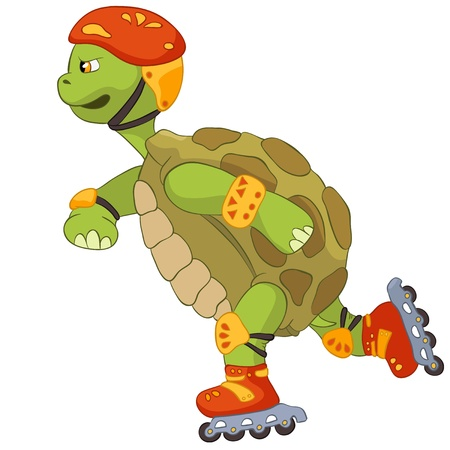 tortue de terre: Rouleau Dr�le de tortue Illustration