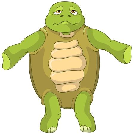 Funny Turtle  Confusion  Ilustracja