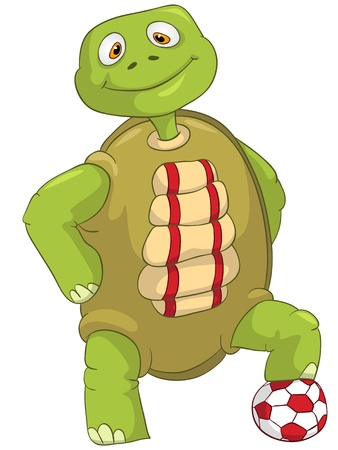 turtle isolated: Funny Turtle  Soccer Player  Illustration