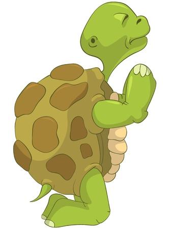 Funny Turtle  Pray  Vector