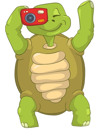 turtle isolated: Funny Turtle  Tourist - Photographer