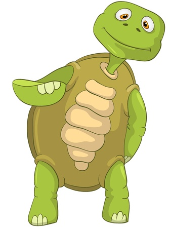 Funny Turtle Stock Vector - 13533772