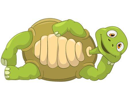 Funny Turtle  Lie  版權商用圖片