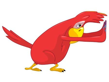 popinjay: Funny Parrot  Pushing  Illustration
