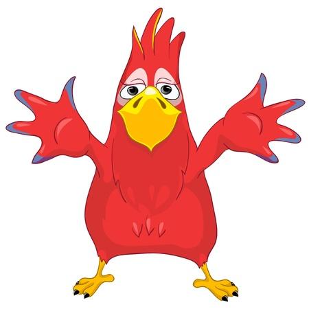 popinjay: Showing Funny Parrot  Illustration