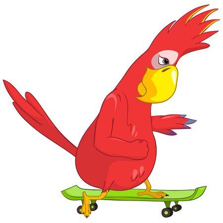 Funny Parrot  Skateboarding