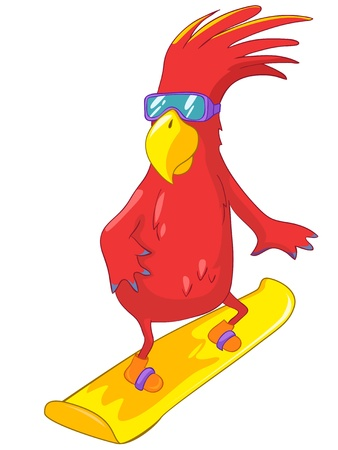 Funny Parrot  Snowboarding Stock Vector - 13963908