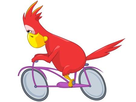 Funny Parrot  Biker  Stock Vector - 13963857