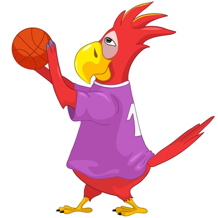 Funny Parrot  Basketball Stock Vector - 13963859