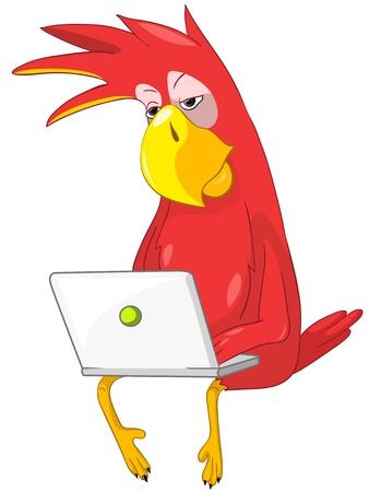 Funny Parrot  Coder  Stock Vector - 13963858