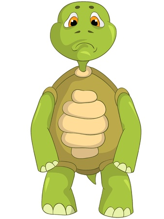 Cartoon Character Sad Turtle Isolated on White Background