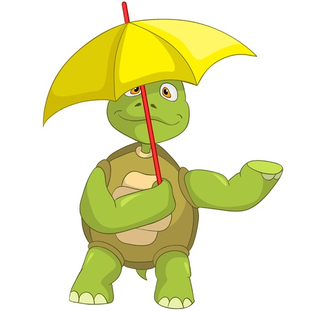cartoon umbrella: Cartoon Character Funny Turtle Isolated on White Background. Illustration