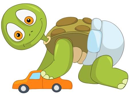 만화 캐릭터 재미 거북이 흰색 배경에 고립