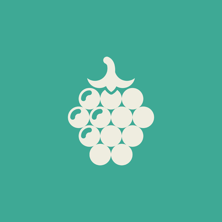 Raspberry Flat Icon Ilustrace