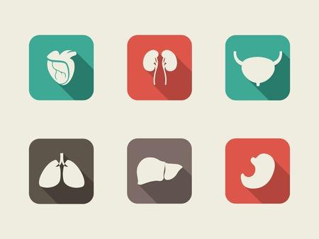Medical Flat Infographic Element Graphics  Vectores