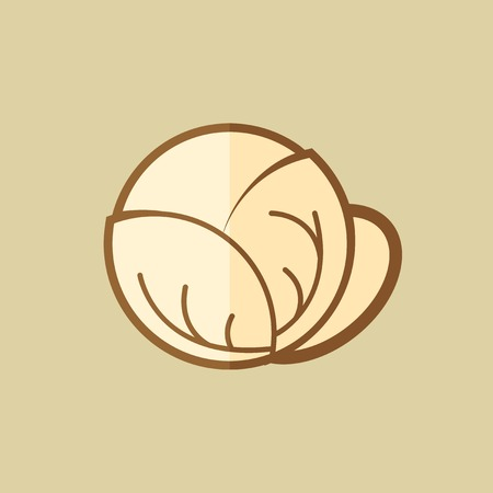 brassica: Cabbage. Food Flat Icon. Illustration