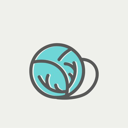 Cabbage icon thin line for web and mobile, modern minimalistic flat design. Vector icon with dark grey outline and offset colour on light grey background.