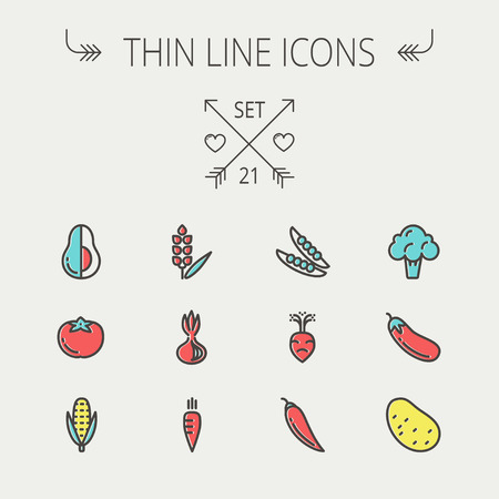 Food and drink thin line icon set for web and mobile. Set includes-beans, eggplant, potato, cauliflower, turnip, corn, avocado, carrot  icons. Modern minimalistic flat design. Vector icon with dark grey outline and offset colour on light grey background Ilustração