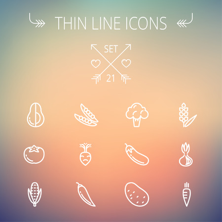 Food and drink thin line icon set for web and mobile. Set includes-beans, eggplant, potato, cauliflower, turnip, corn, avocado, carrot  icons. Modern minimalistic flat design. Vector white icon on gradient mesh background.