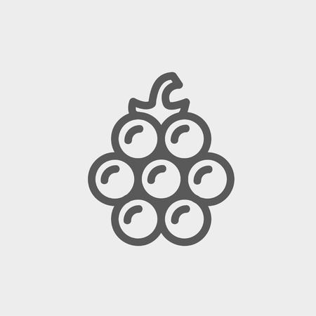 Lanzones icon thin line for web and mobile, modern minimalistic flat design. Vector dark grey icon on light grey background. 向量圖像