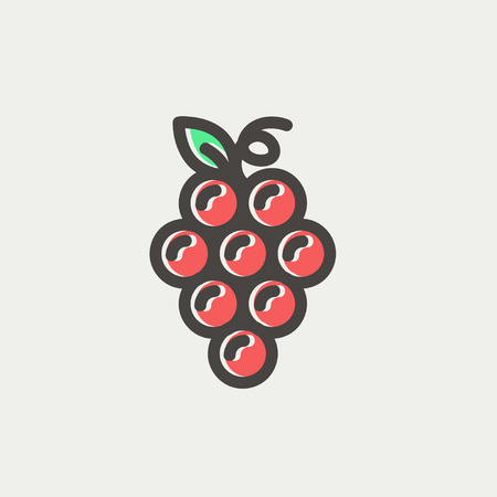 viticulture: Bunch of grapes icon thin line for web and mobile, modern minimalistic flat design. Vector icon with dark grey outline and offset colour on light grey background. Illustration