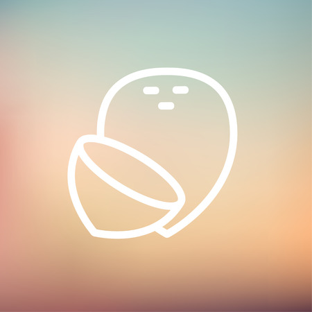 Coconut icon thin line for web and mobile, modern minimalistic flat design.  Vector